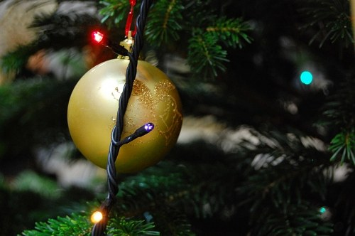 Bauble and lights in a fir tree
