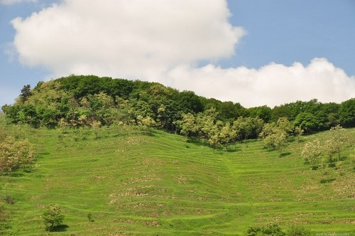 Curved terrace hill