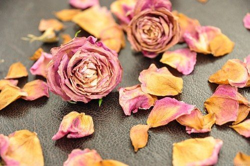 Dry roses leather
