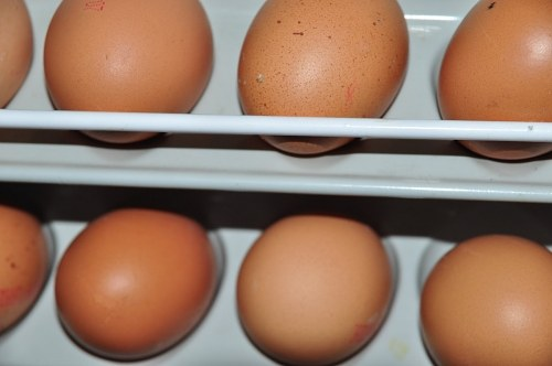 Eggs on shelf