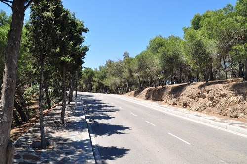 Free photos: Empty road trough forest