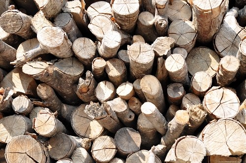 Free photos: Firewood pile