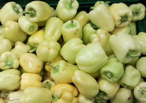 Free photos: Green peppers in supermarket