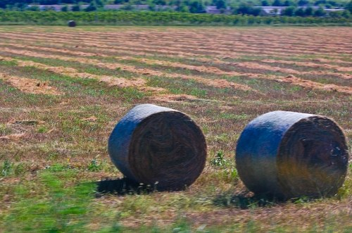Free photos: Hay roll in field