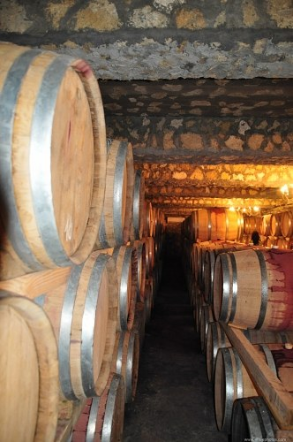 Lots  of wine barrels