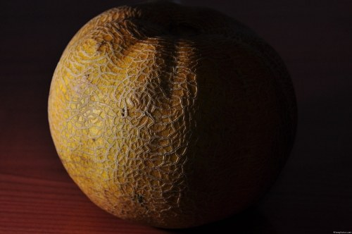 Free photos: Mellon shadow