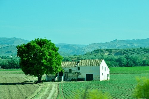 Free photos: Old farm