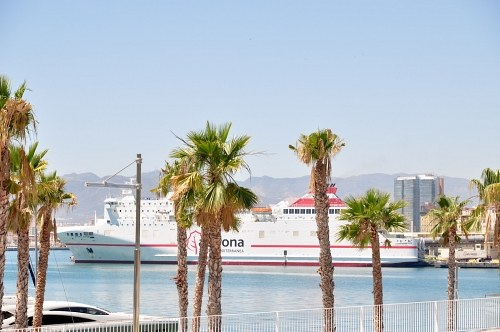 Free photos: Palm and ferry