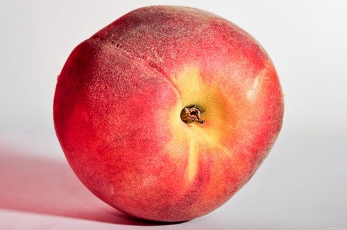 Free photos: Peach on paper