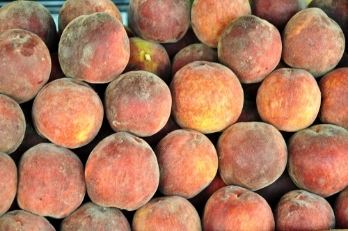 Free photos: Peaches for sale