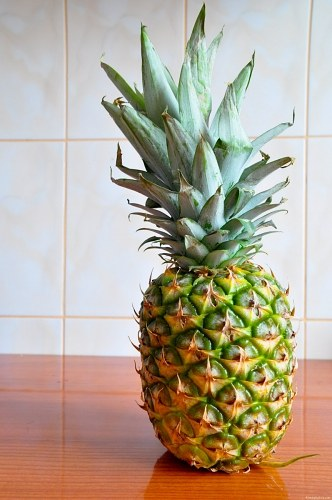 Free photos: Pineapple on table