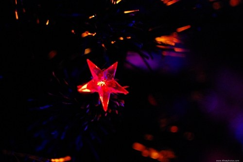 Red light star