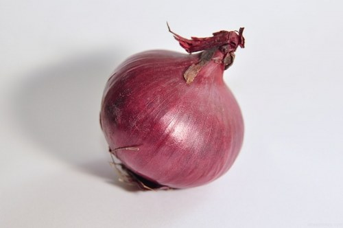 Free photos: Red onion isolated on white