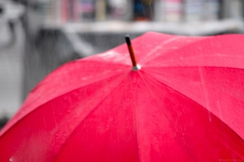 Free photos: Parapluie rouge