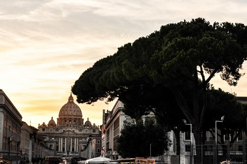 Road to Vatican