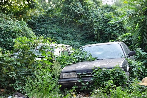 Free photos: Rusty and abandoned cars