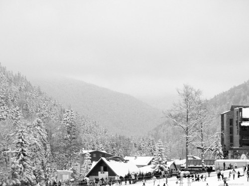 Free photos: Ski resort