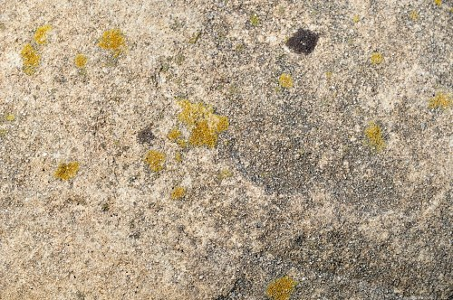 Stone surface pattern