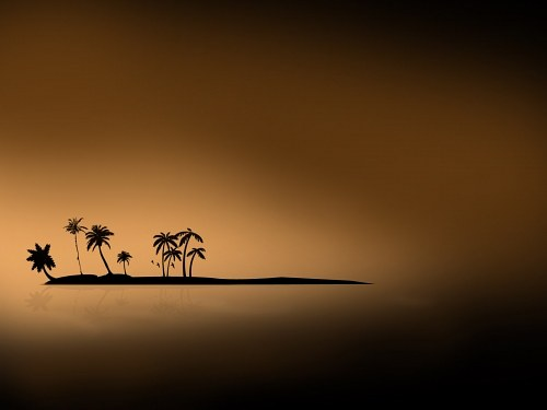 Free photos: Sunset on palm island