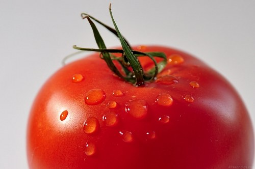 Free photos: Tomato Kopf