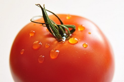 Free photos: Tomato with water drops