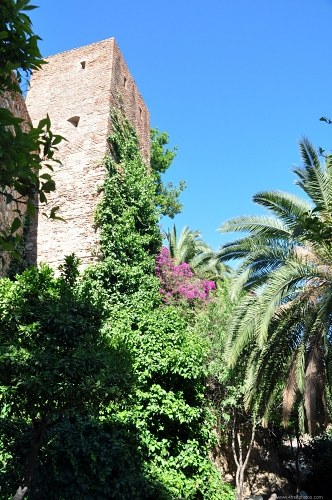 Free photos: Tropical castle tower