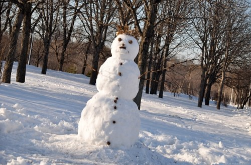Winter snow man
