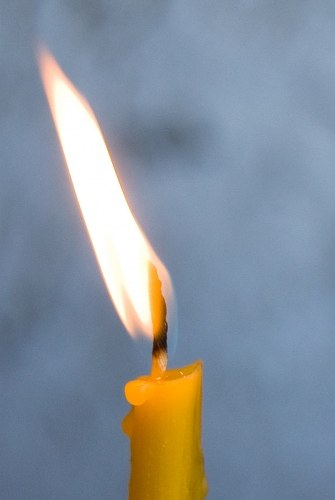 Free photos: A luz de velas