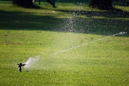 Sprinkler over grass