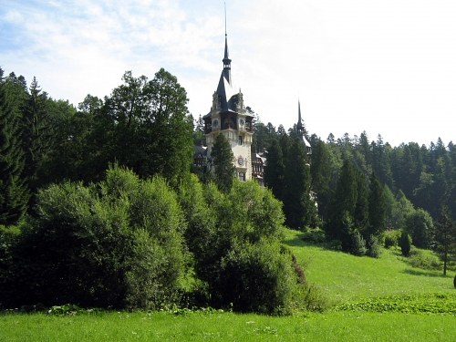 Castle in forest
