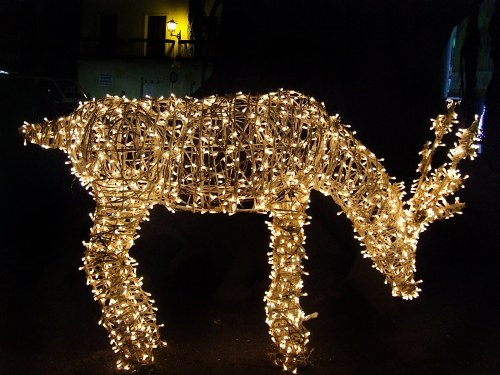Chrismas deer ligh decoration