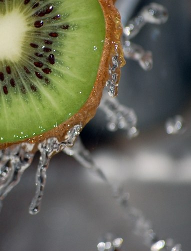 Free photos: Kiwi fresco