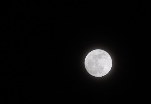 Free photos: Glowing luna piena