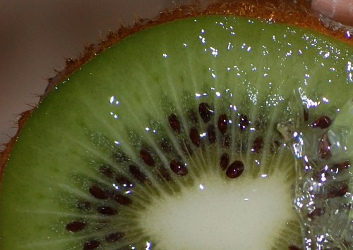 Kiwi slice closeup