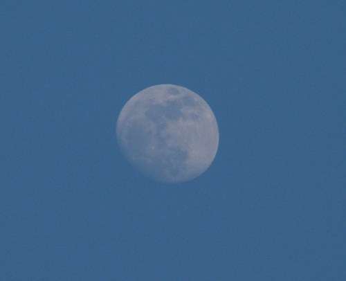Moon during day on sky