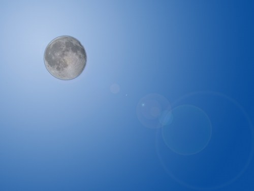 Free photos: Illustrazione Moon glow
