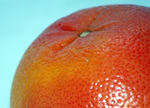Red Grapefruit Detail