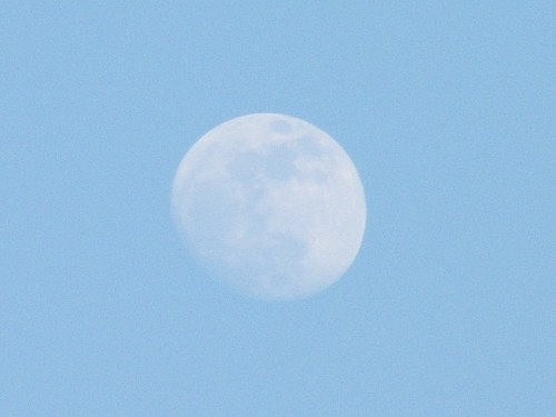 Free photos: Waxing Gibbous Moon